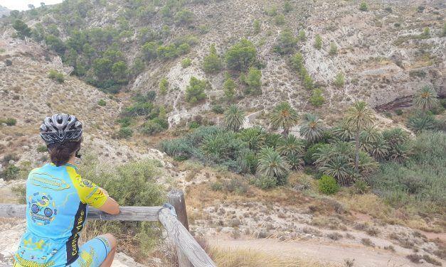 Crónica ruta Ciclismo Carretera Molina de Segura Fortuna Hoya del Fenazar Hurona Rellano Estación de Blanca